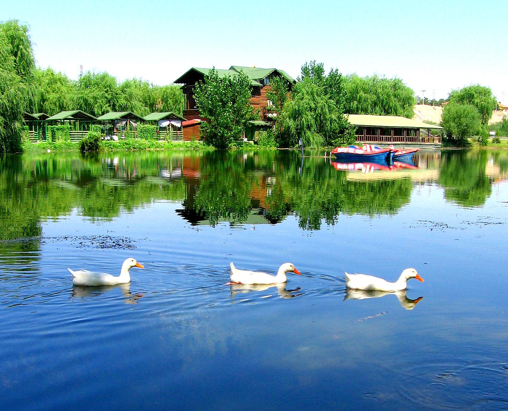 Vologda il: tarih ve görülecek yerler 99